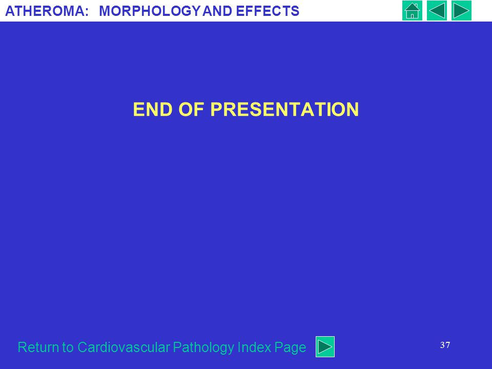 END OF PRESENTATION Return to Cardiovascular Pathology Index Page