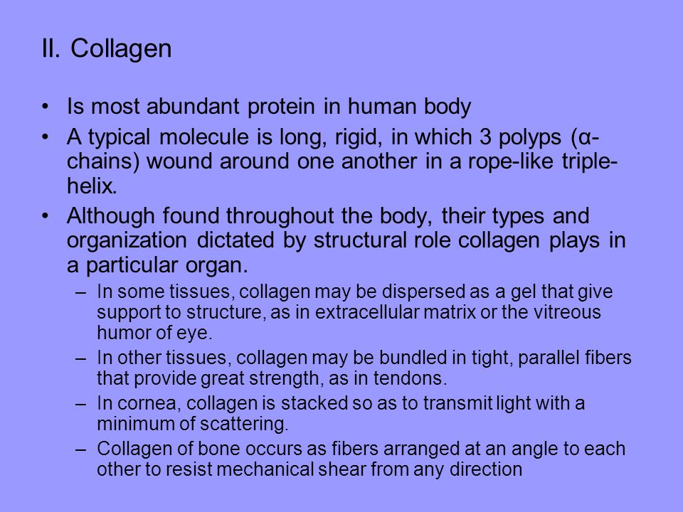 II. Collagen Is most abundant protein in human body