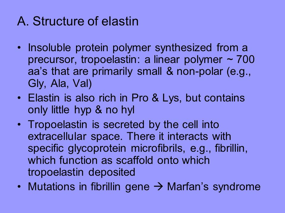A. Structure of elastin