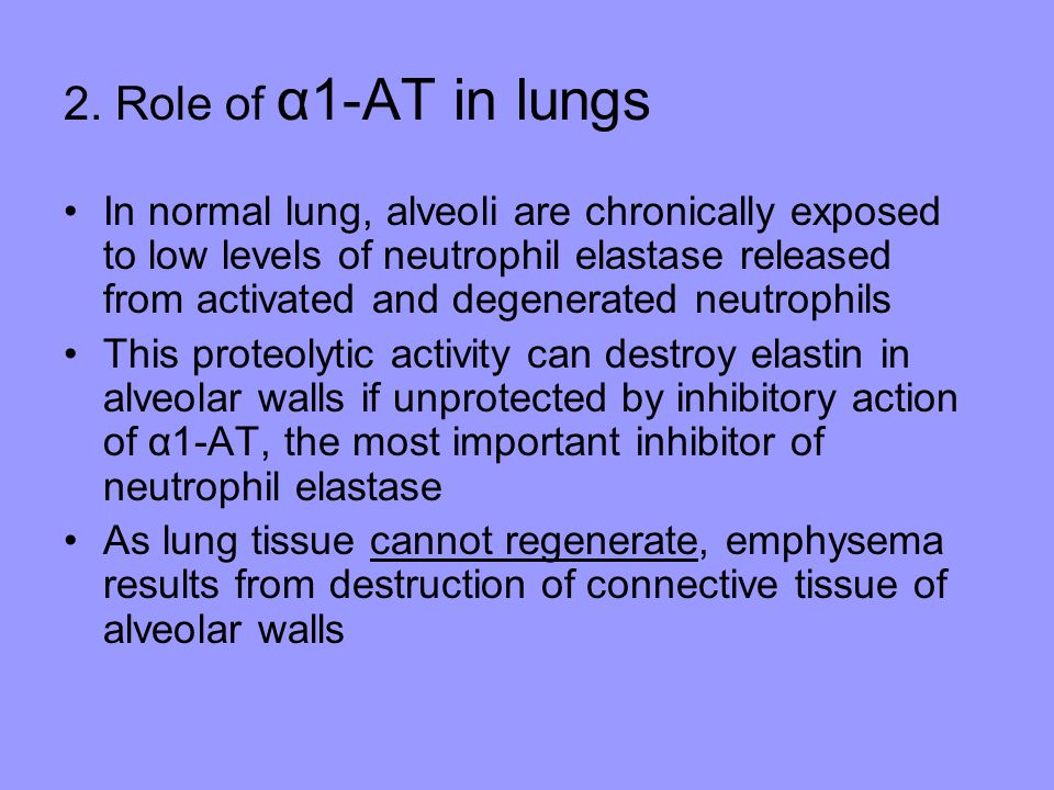 2. Role of α1-AT in lungs