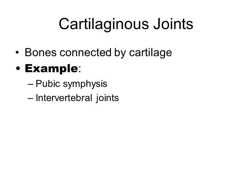 Cartilaginous Joints Bones connected by cartilage Example: