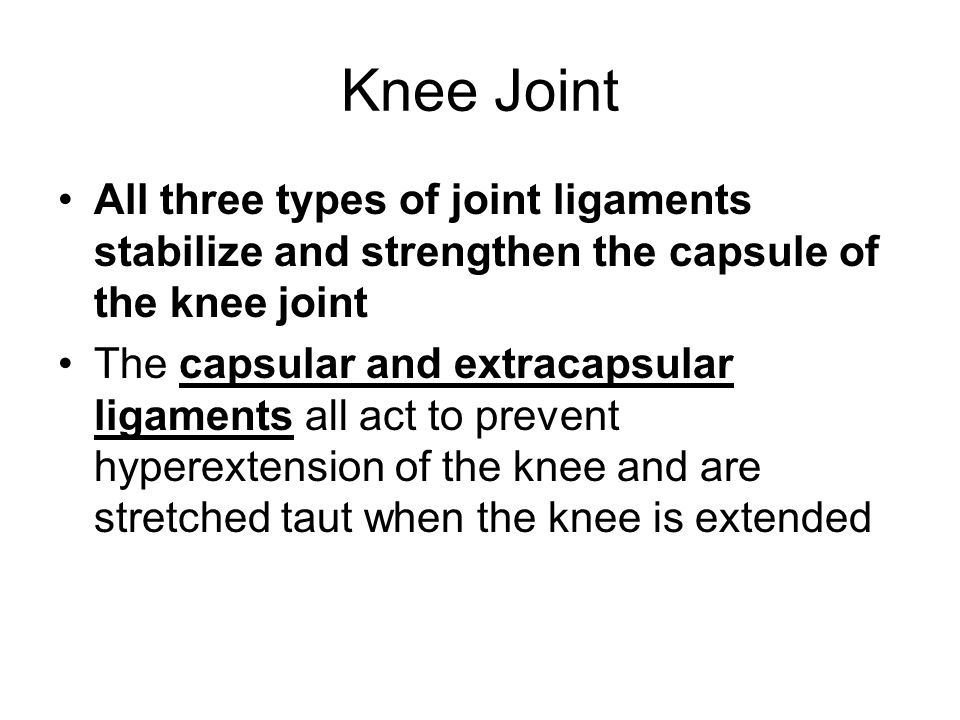 Knee Joint All three types of joint ligaments stabilize and strengthen the capsule of the knee joint.