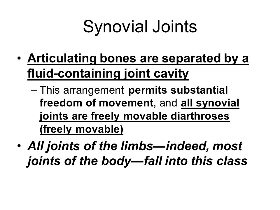 Synovial Joints Articulating bones are separated by a fluid-containing joint cavity.