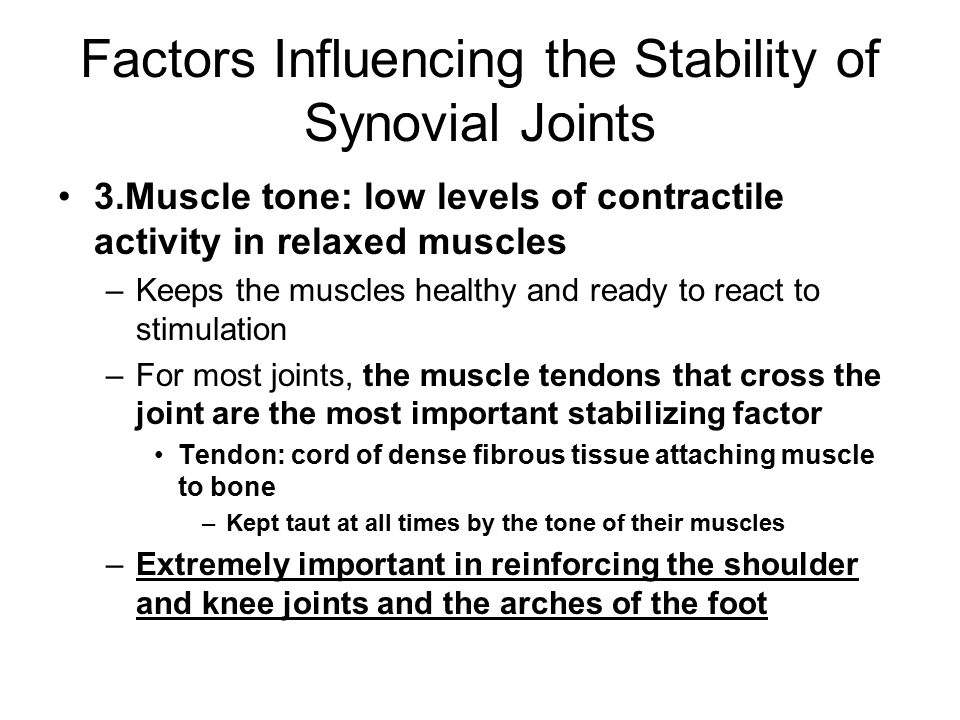 Factors Influencing the Stability of Synovial Joints