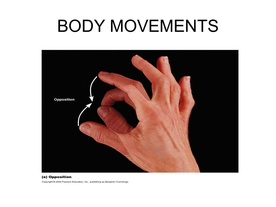 BODY MOVEMENTS