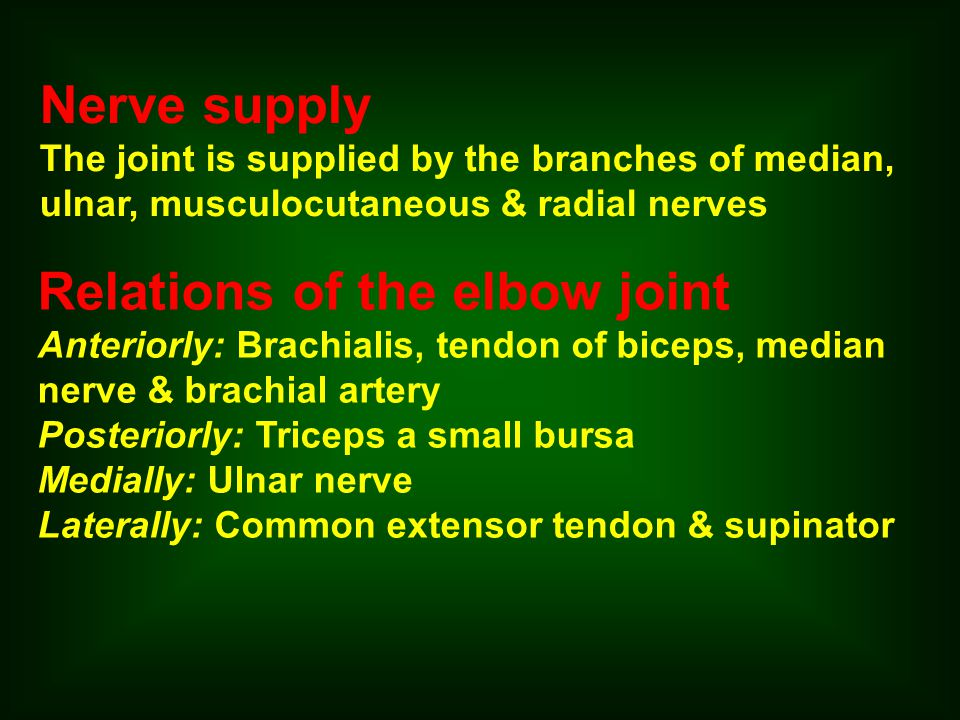 Relations of the elbow joint