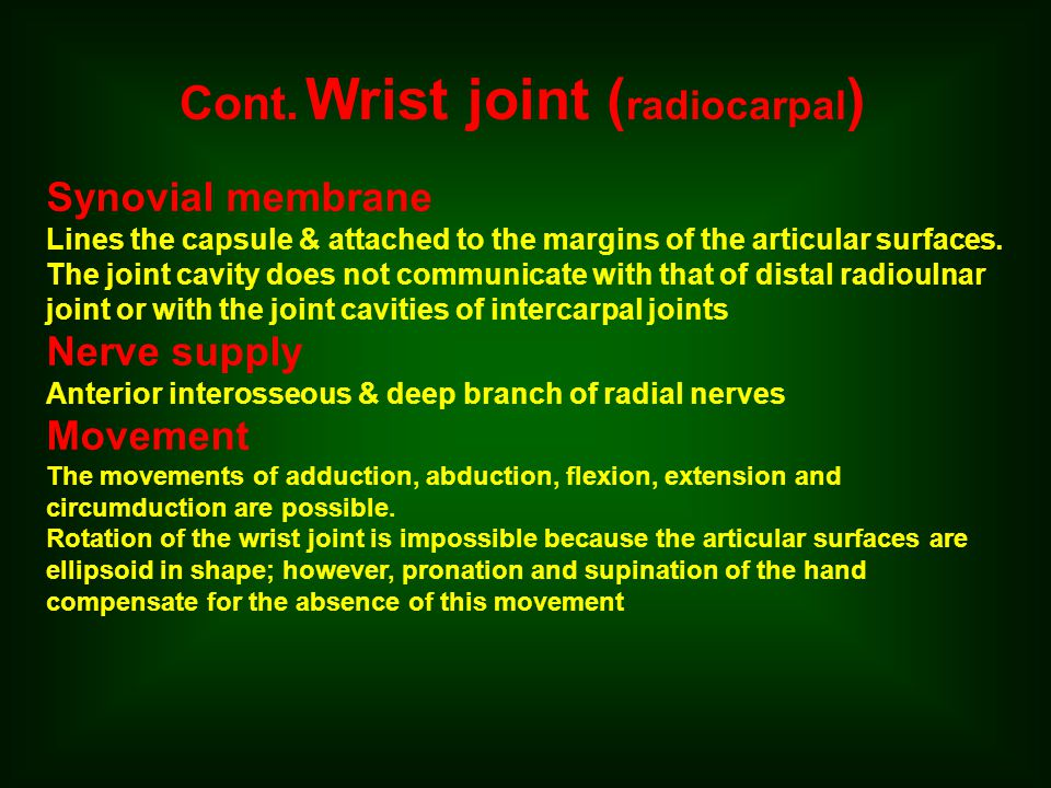 Cont. Wrist joint (radiocarpal)
