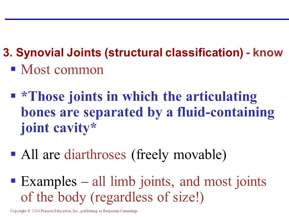 3. Synovial Joints (structural classification) - know