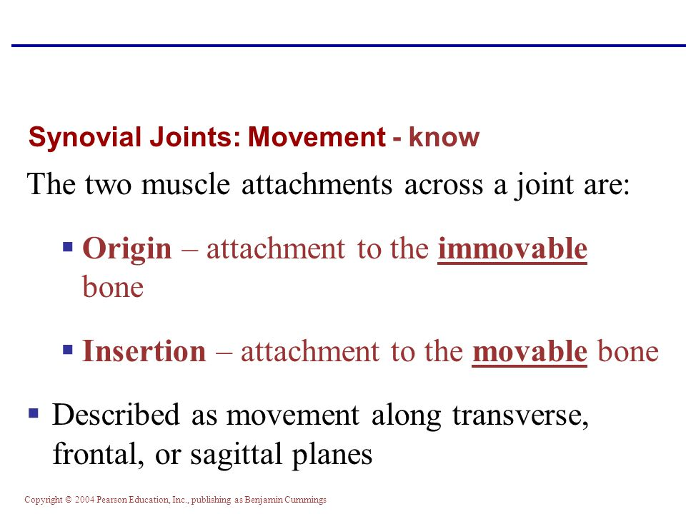 Synovial Joints: Movement - know