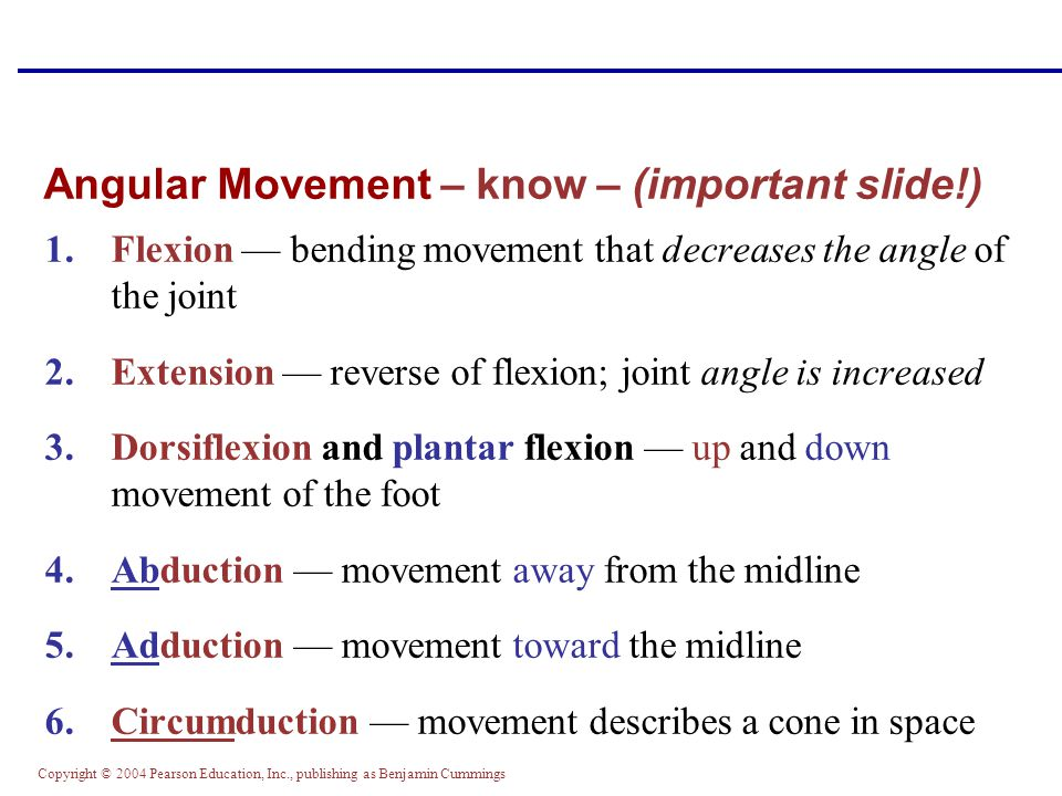 Angular Movement – know – (important slide!)