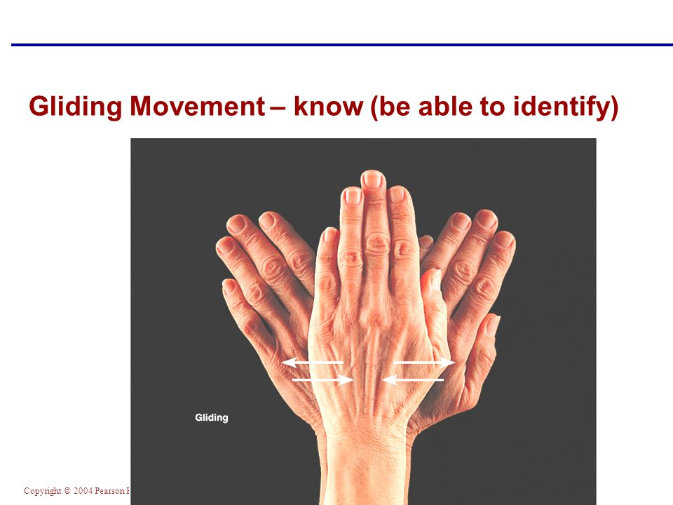 Gliding Movement – know (be able to identify)