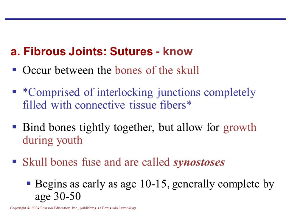 a. Fibrous Joints: Sutures - know