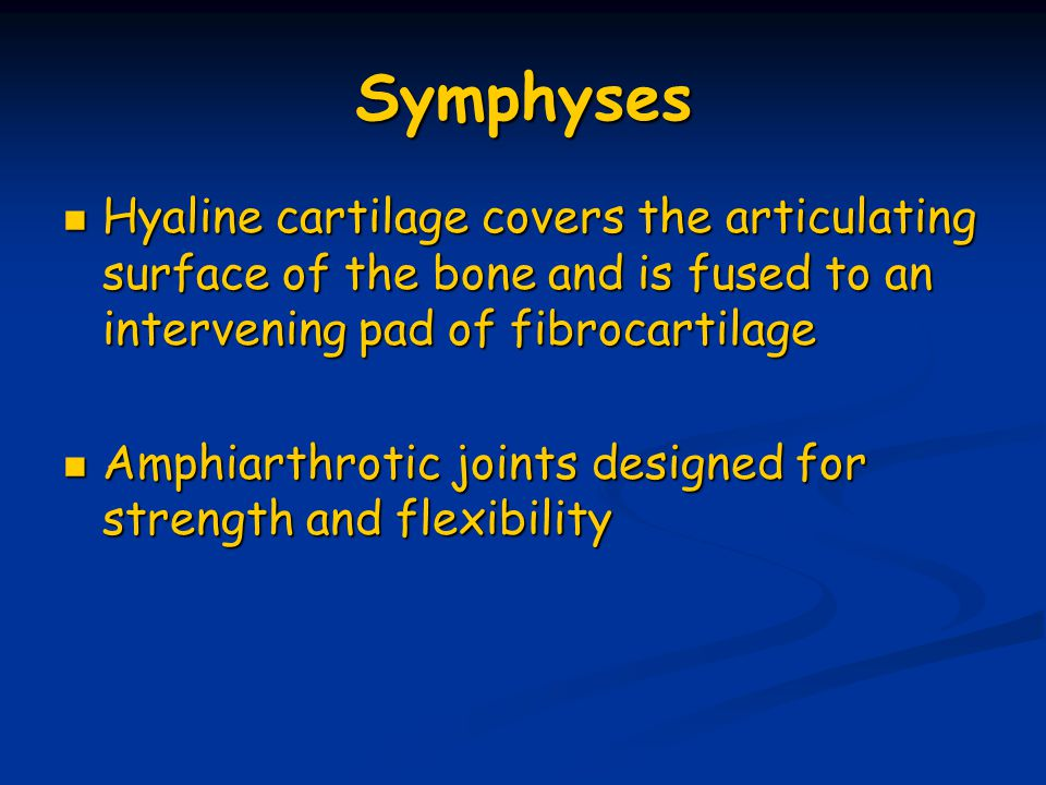 Symphyses Hyaline cartilage covers the articulating surface of the bone and is fused to an intervening pad of fibrocartilage.