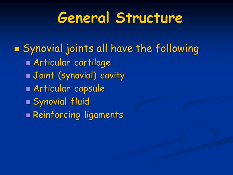 General Structure Synovial joints all have the following