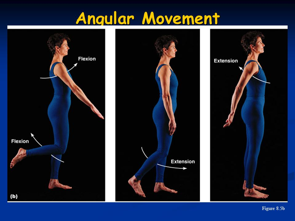 Angular Movement Figure 8.5b