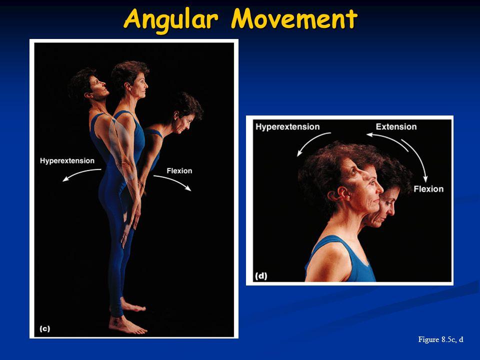 Angular Movement Figure 8.5c, d