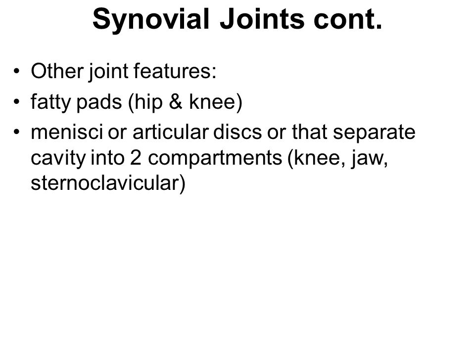 Synovial Joints cont. Other joint features: fatty pads (hip & knee)