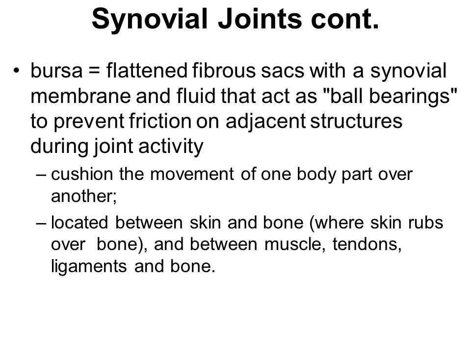 Synovial Joints cont.