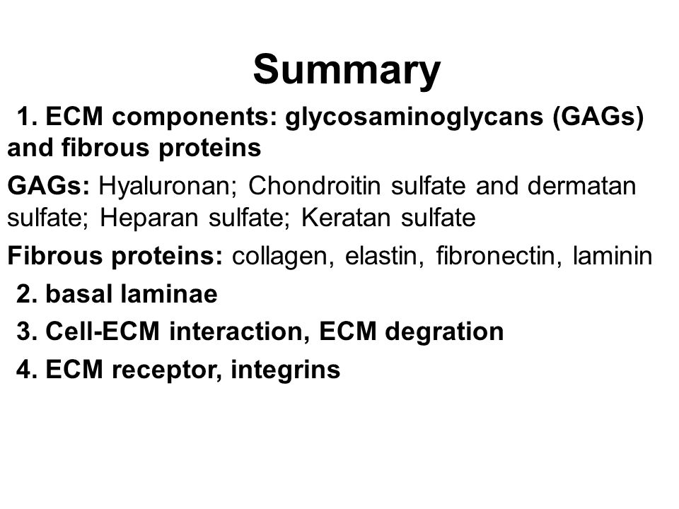 Summary 1. ECM components: glycosaminoglycans (GAGs) and fibrous proteins.