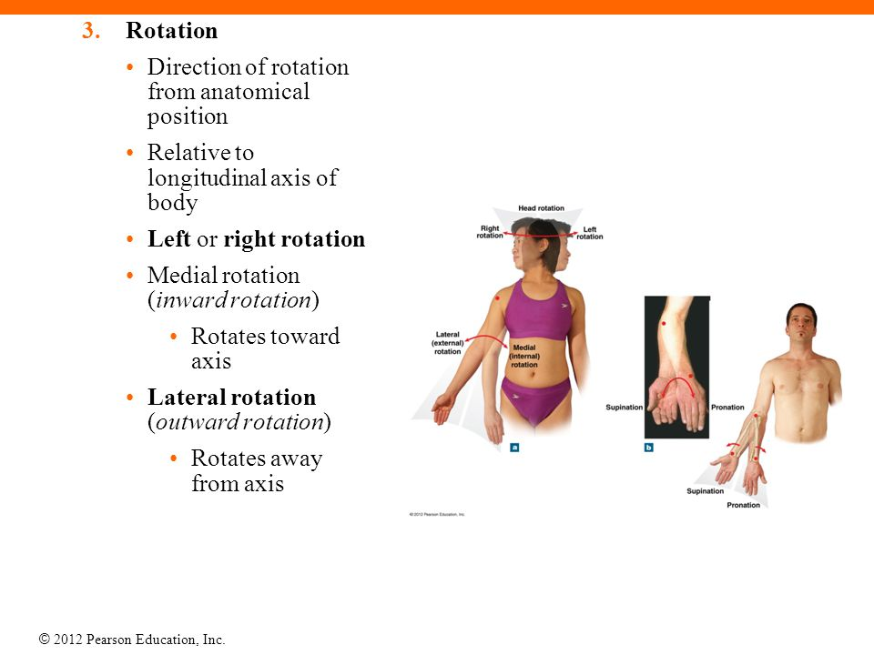 Rotation Direction of rotation from anatomical position. Relative to longitudinal axis of body. Left or right rotation.
