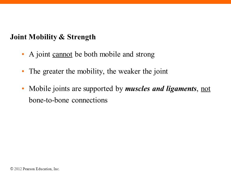 Joint Mobility & Strength