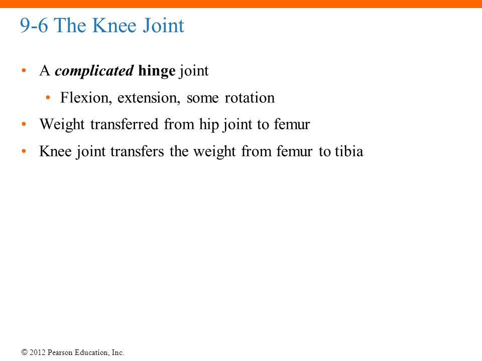 9-6 The Knee Joint A complicated hinge joint