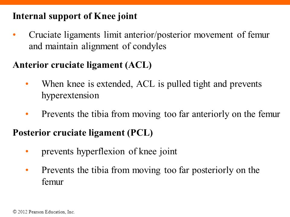 Internal support of Knee joint