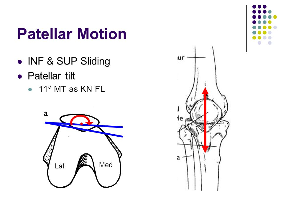 Patellar Motion INF & SUP Sliding Patellar tilt 11 MT as KN FL Med