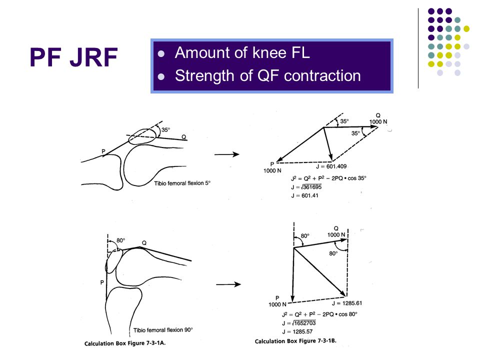 PF JRF Amount of knee FL Strength of QF contraction