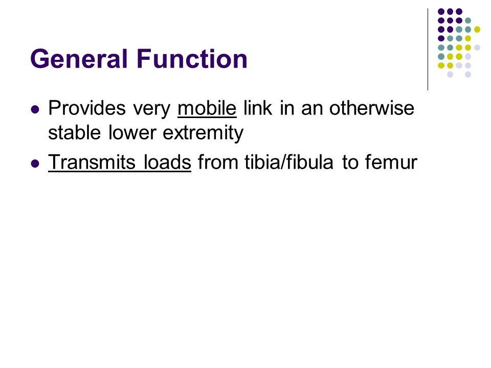 General Function Provides very mobile link in an otherwise stable lower extremity.