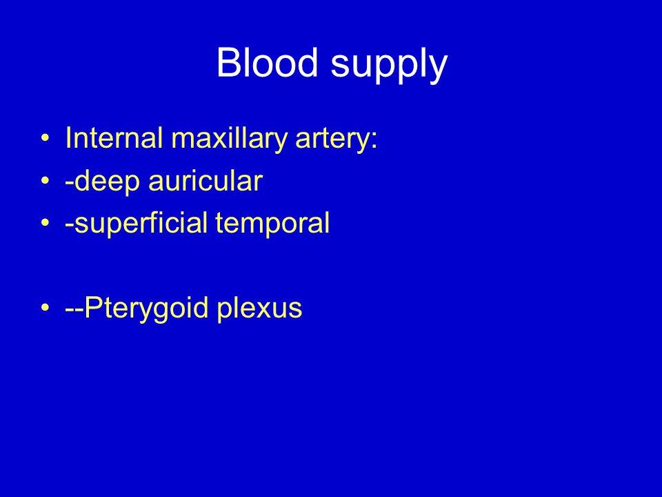 Blood supply Internal maxillary artery: -deep auricular