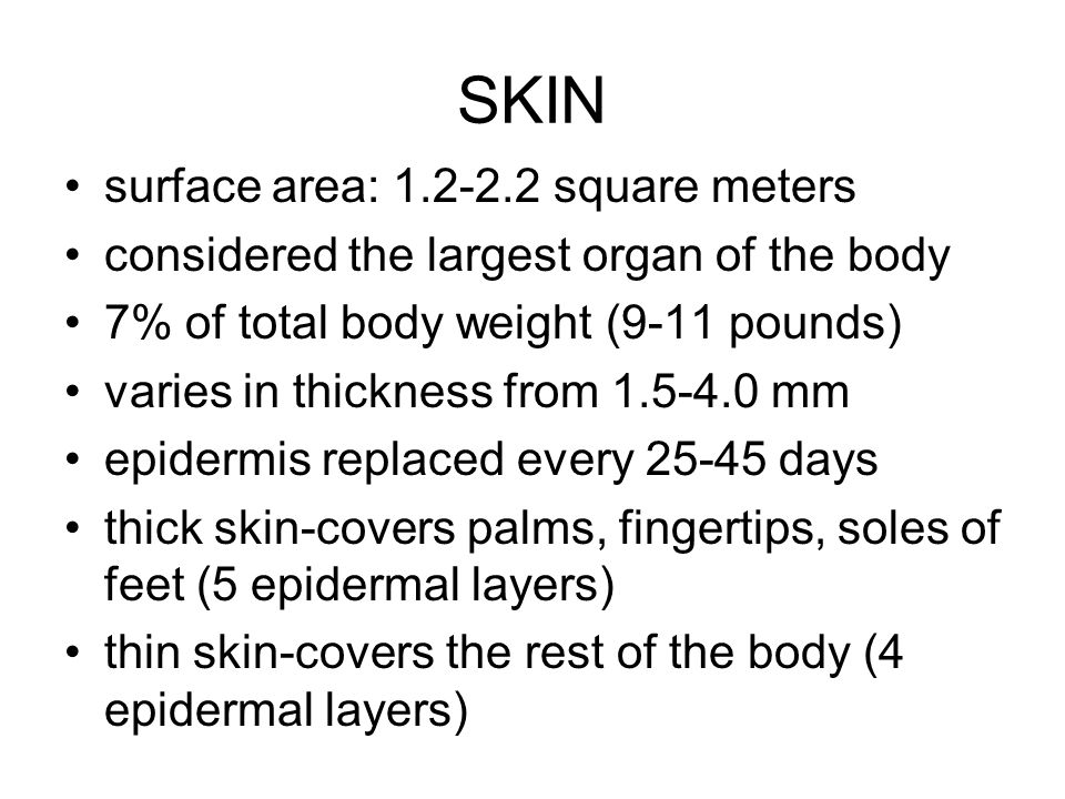 SKIN surface area: 1.2-2.2 square meters