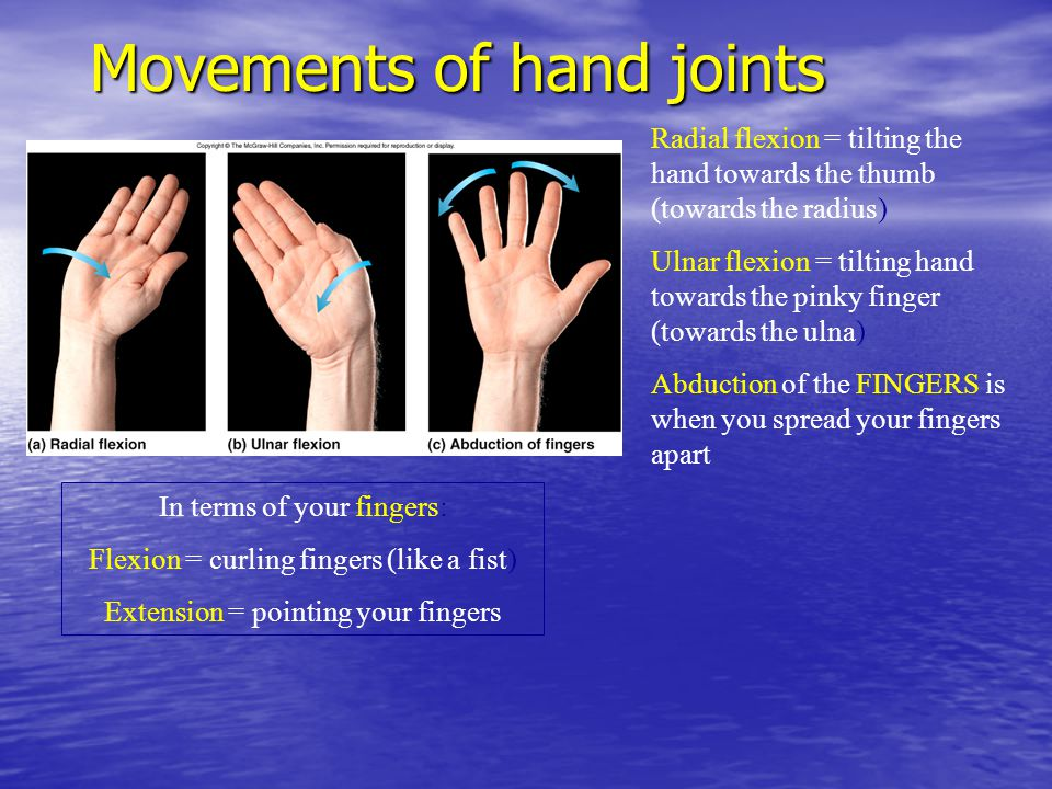 Movements of hand joints