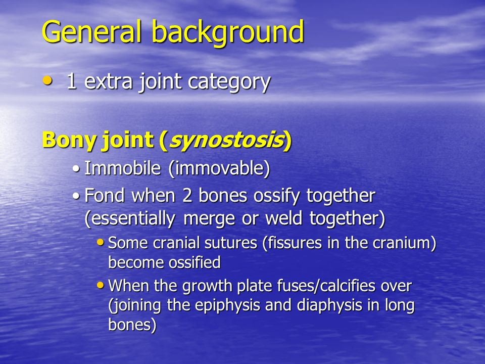 General background 1 extra joint category Bony joint (synostosis)