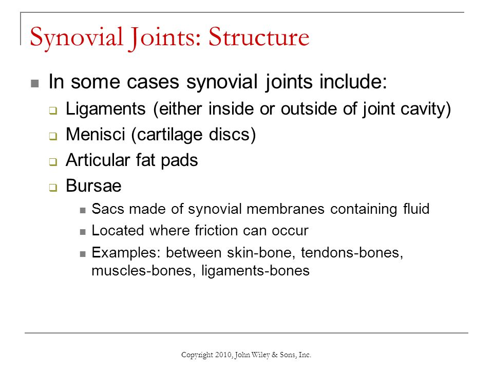 Synovial Joints: Structure