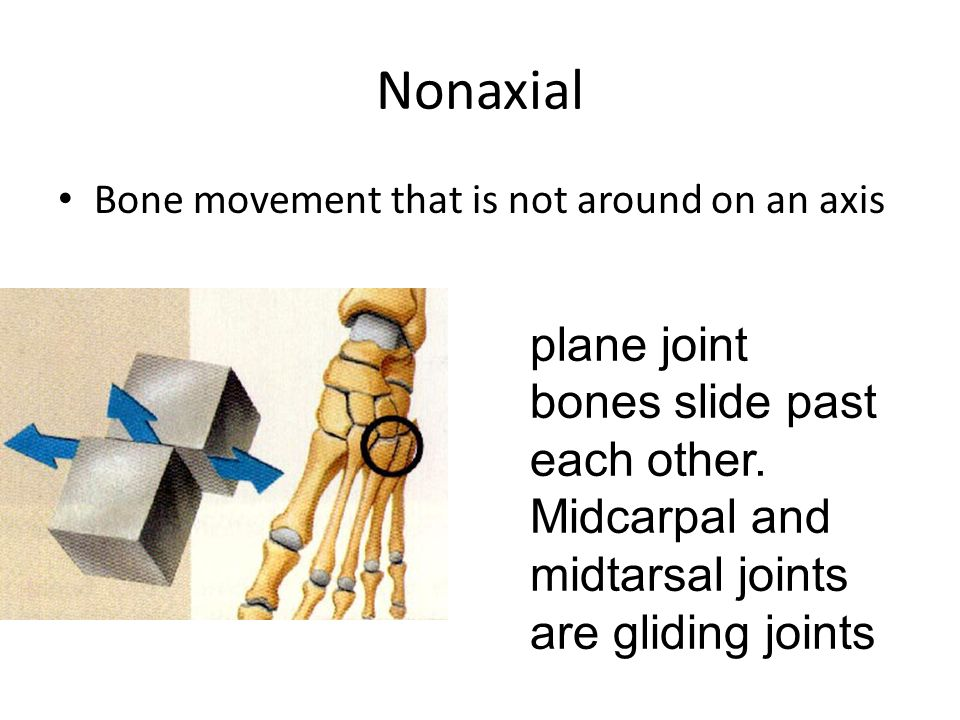 Nonaxial Bone movement that is not around on an axis.
