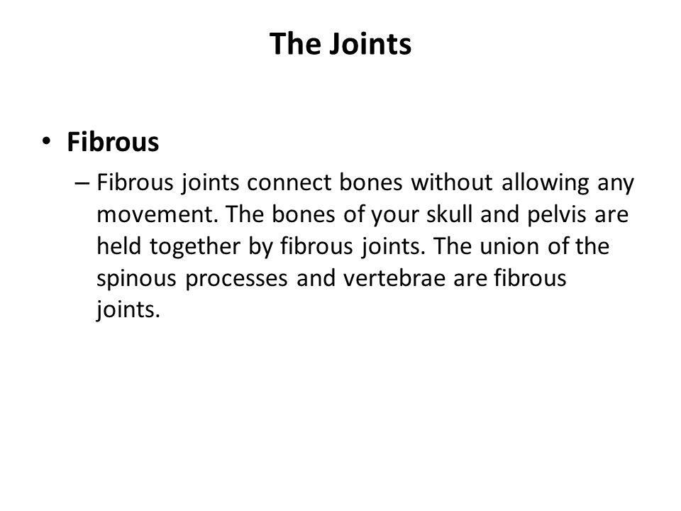 The Joints Fibrous.