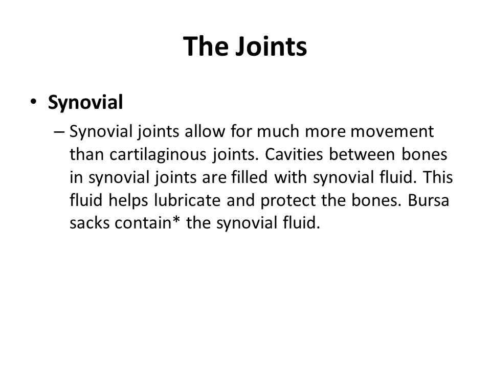 The Joints Synovial.