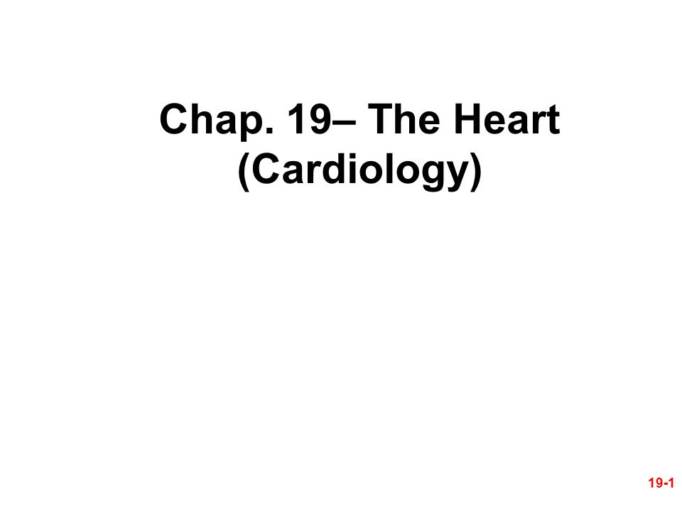 Chap. 19– The Heart (Cardiology)