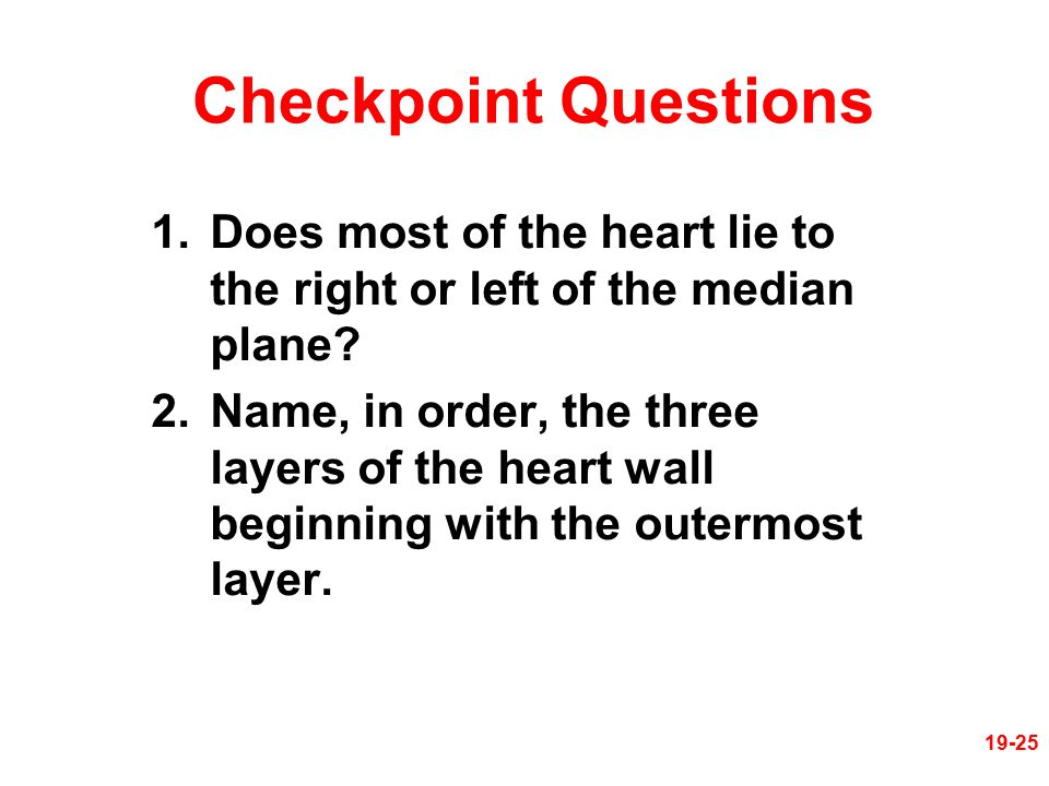 Checkpoint Questions Does most of the heart lie to the right or left of the median plane