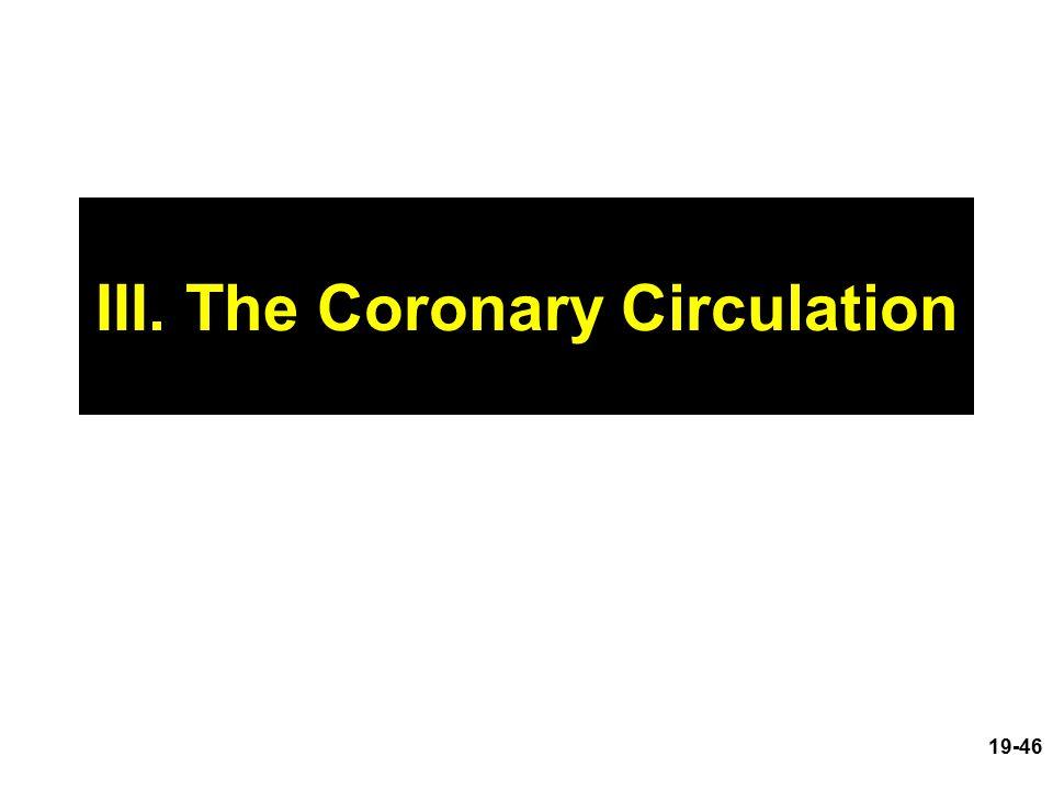 III. The Coronary Circulation