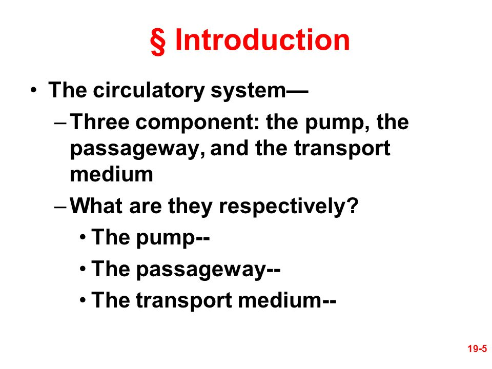 § Introduction The circulatory system—