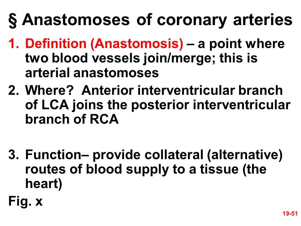 § Anastomoses of coronary arteries