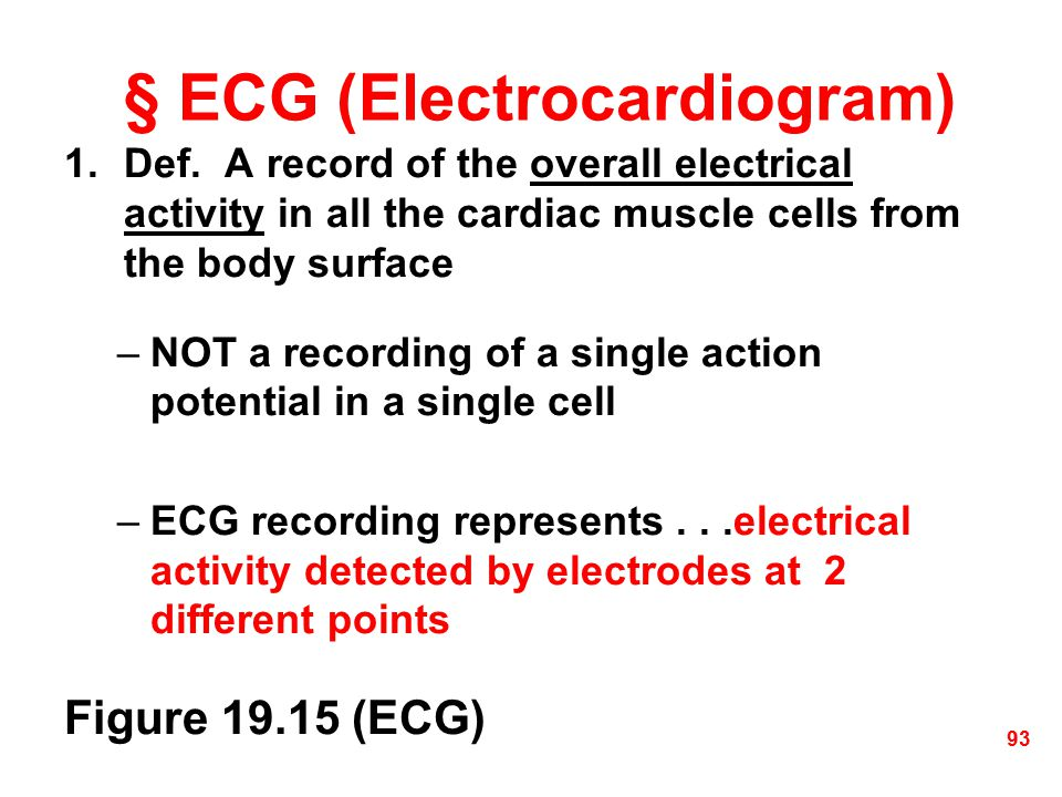 § ECG (Electrocardiogram)