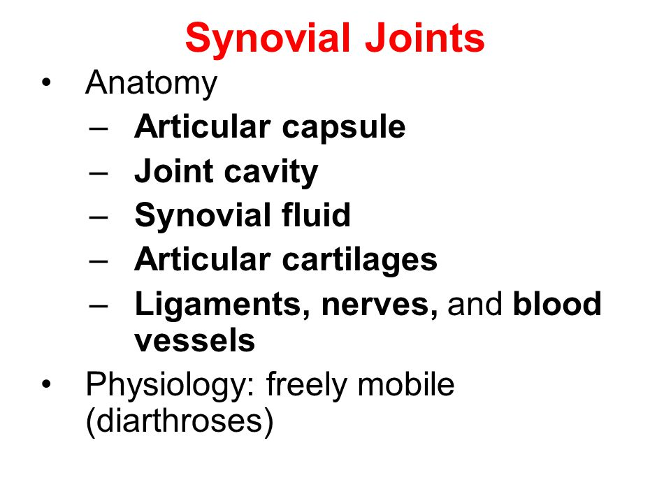 Synovial Joints Anatomy Articular capsule Joint cavity Synovial fluid