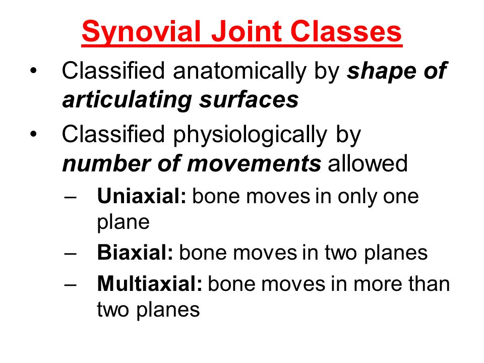 Synovial Joint Classes