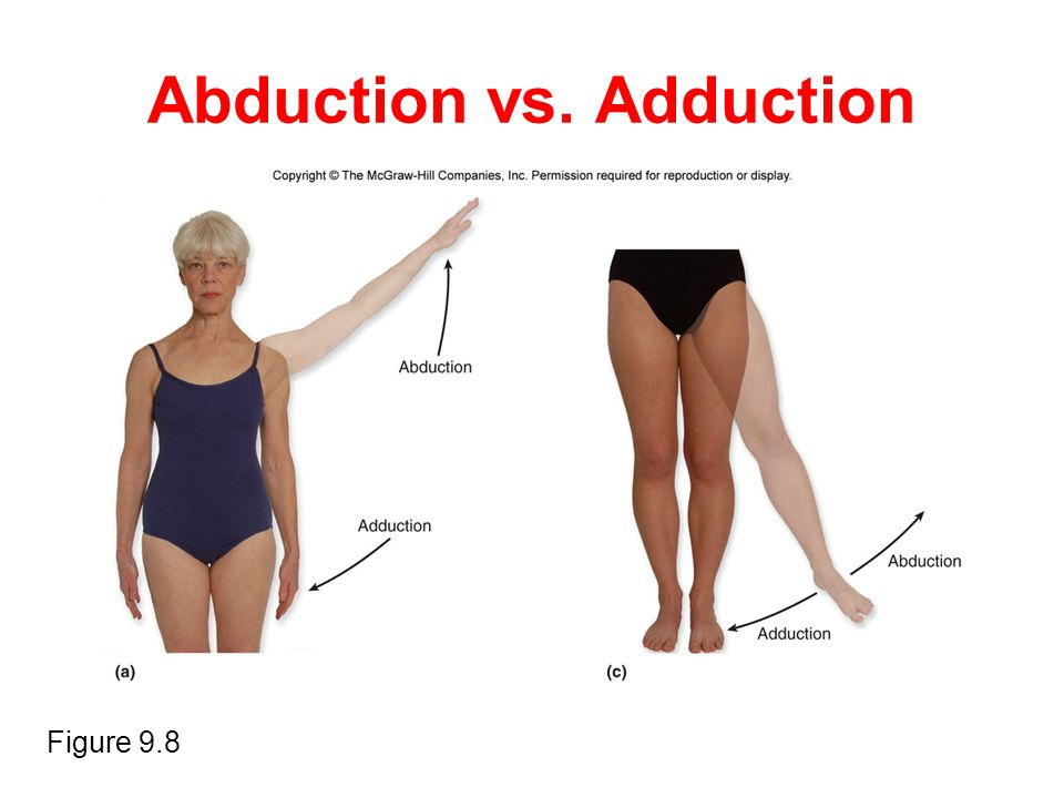 Abduction vs. Adduction