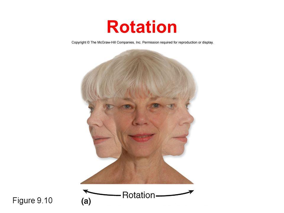 Rotation Figure 9.10