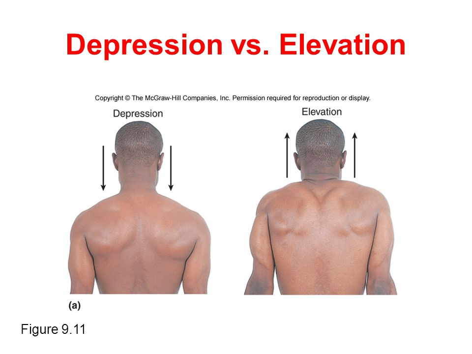 Depression vs. Elevation