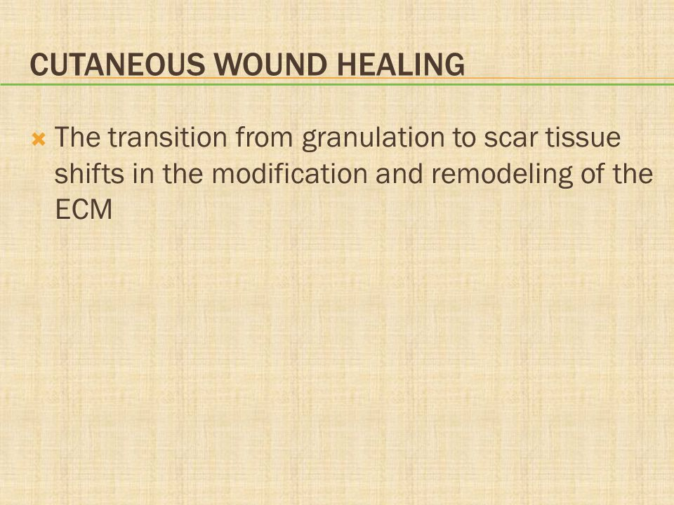Cutaneous Wound Healing
